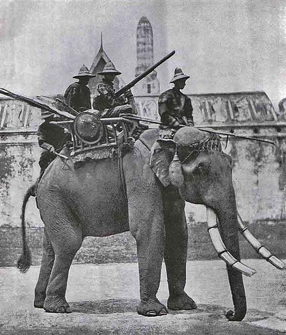 Vintage photo of a war elephant in Bangkok Thailand circa 1890.