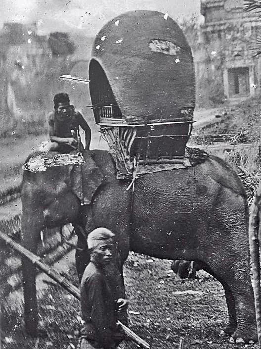 Thailand elephant late 19th Century