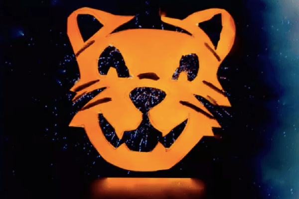 Image result for tiger, vault festival