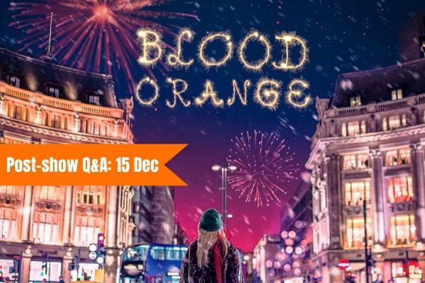Terri Paddock chairs a post-show Q&A at Blood Orange at the Old Red Lion Theatre on 10 December 2019