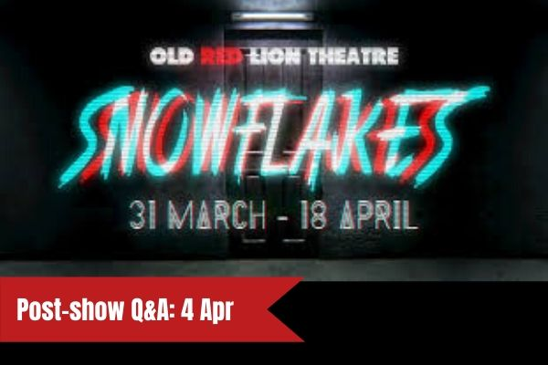 Terri Paddock chairs a post-show Q&A for Snowflakes at London's Old Red Lion Theatre