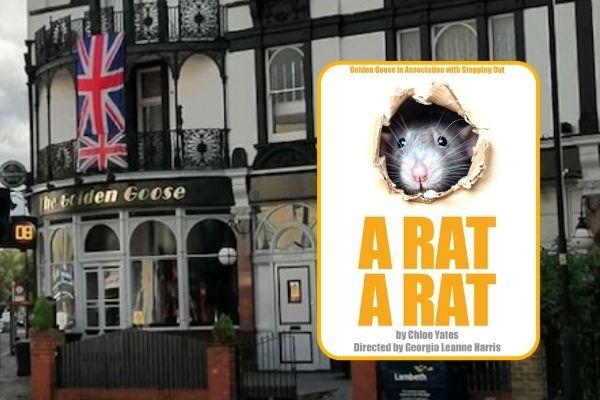 A Rat, A Rat at London's Golden Goose Theatre