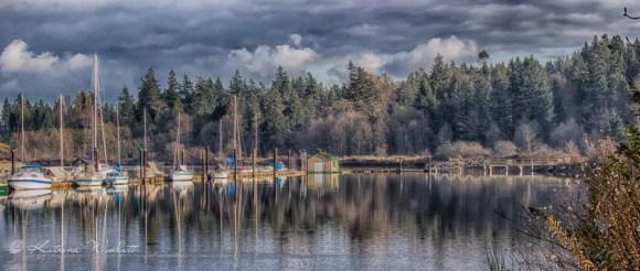 yachts at dockside