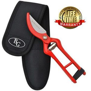 PROFESSIONAL PRUNING SHEARS reviews