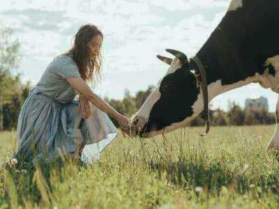 The importance of livestock insurance policy