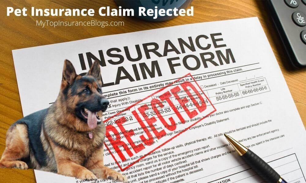 Pet insurance claim rejected