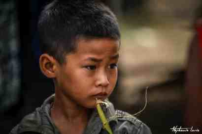 petit cambodgien