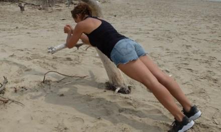 Training sauvage de l'été