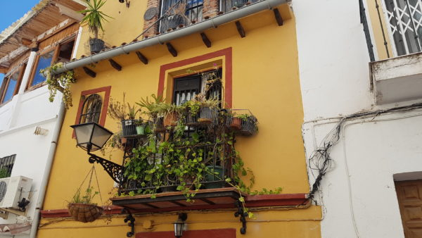 Old Town Marbella best restaurants