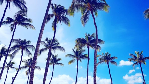 Best Beaches Aruba