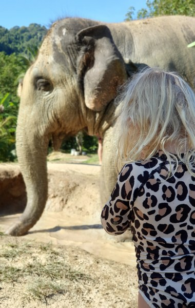 Green Elephant Sanctuary Park Phuket