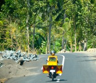 Cucumber motorbike seller heading through the jungle road...