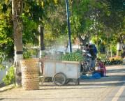 Roadside fruit stalls...