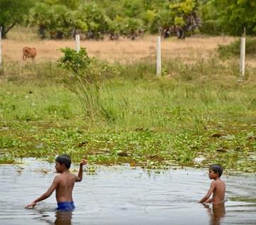 rural playtime...