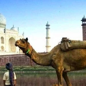 10 Tips for Travellers Visiting India First Time