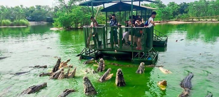 Elephant Kingdom, Chonburi, Thailand