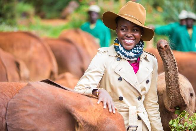© WildAid/courtesy David Sheldrick Wildlife Trust. Actress Lupita Nyong'o with elephant orphans.