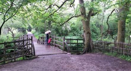 Pooh Sticks Bridge in the Ashdown Forest www.mytunbridgewells.com