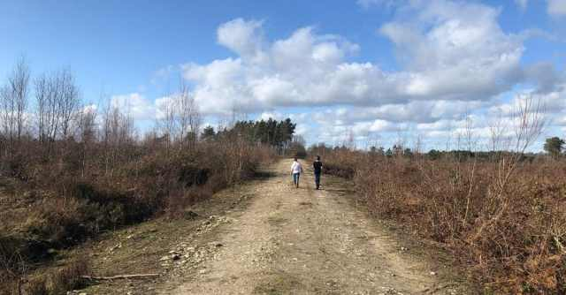 walks for families in Kent and East Sussex