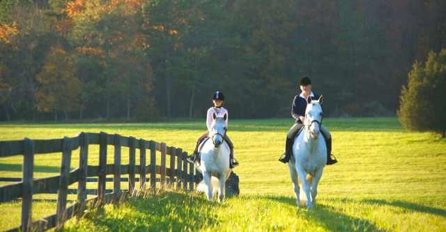 dress appropriately for horseback riding