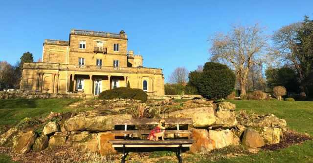 Spring events at Salomons