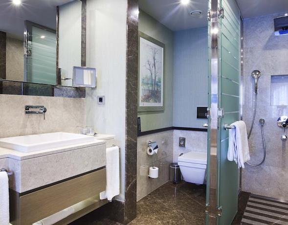 من حمام فندق راديسون شيشلي