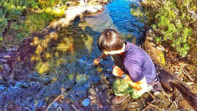 drinking from stream