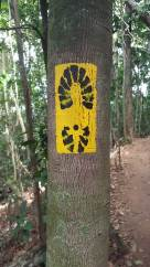 corcovado trail markings