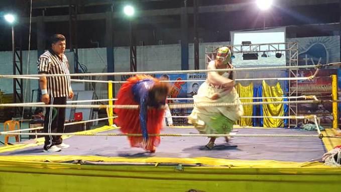 el alto wrestling