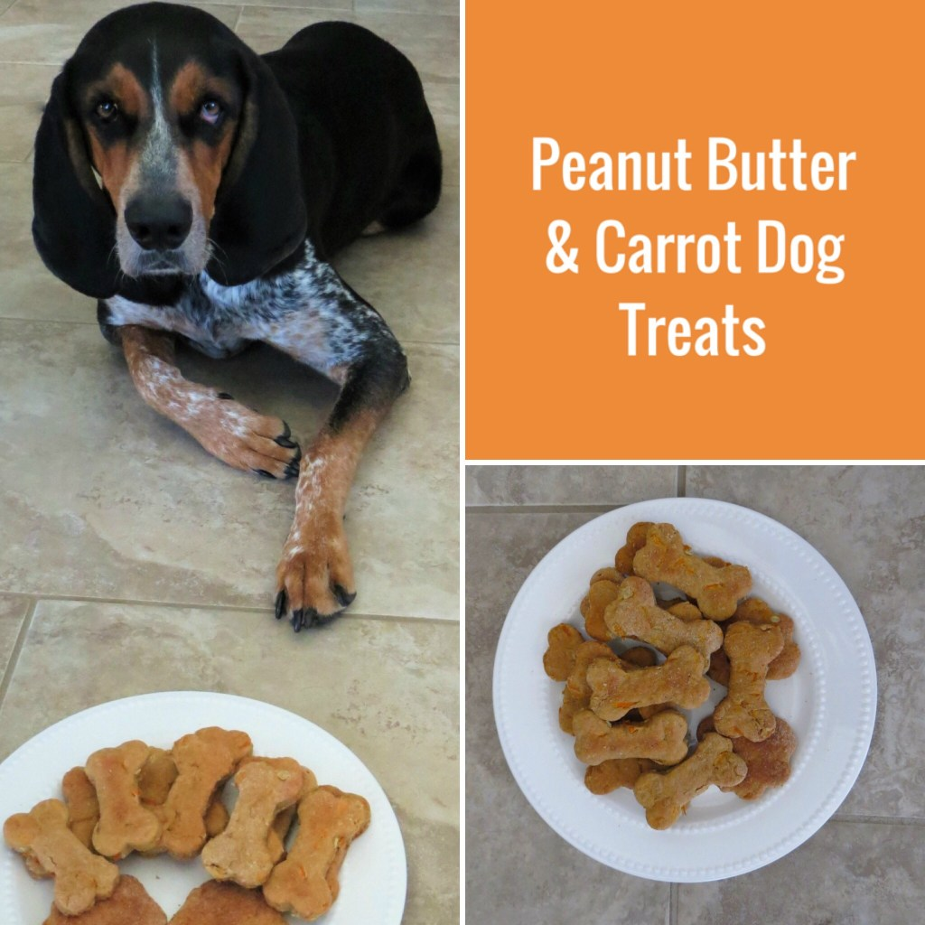 Peanut Butter & Carrot Easy Dog Treat Recipe