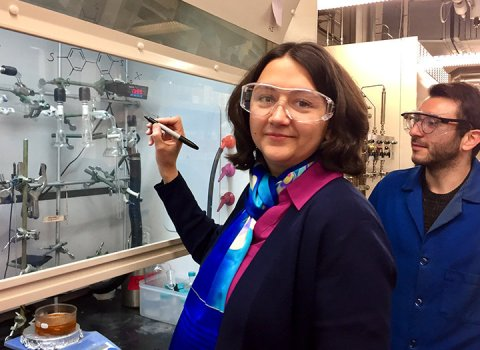 From chemistry problems to mentorship for women in science, Smaranda Marinescu tirelessly seeks the best solutions.