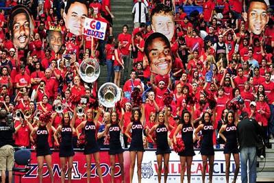 Arizona fans