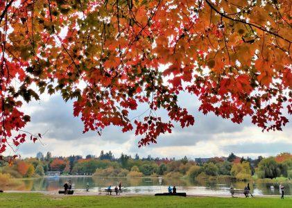 溫哥華遊記|金風起,鱒魚湖的秋色讓人酩酊大醉