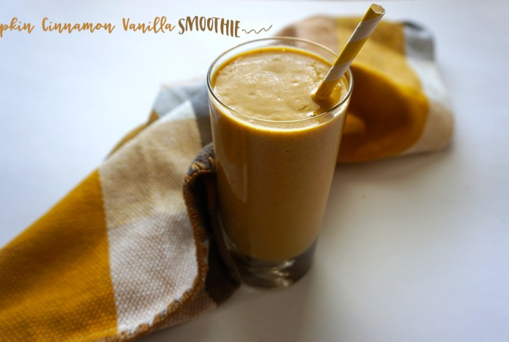 pumpkin siggis vanilla yogurt smoothie