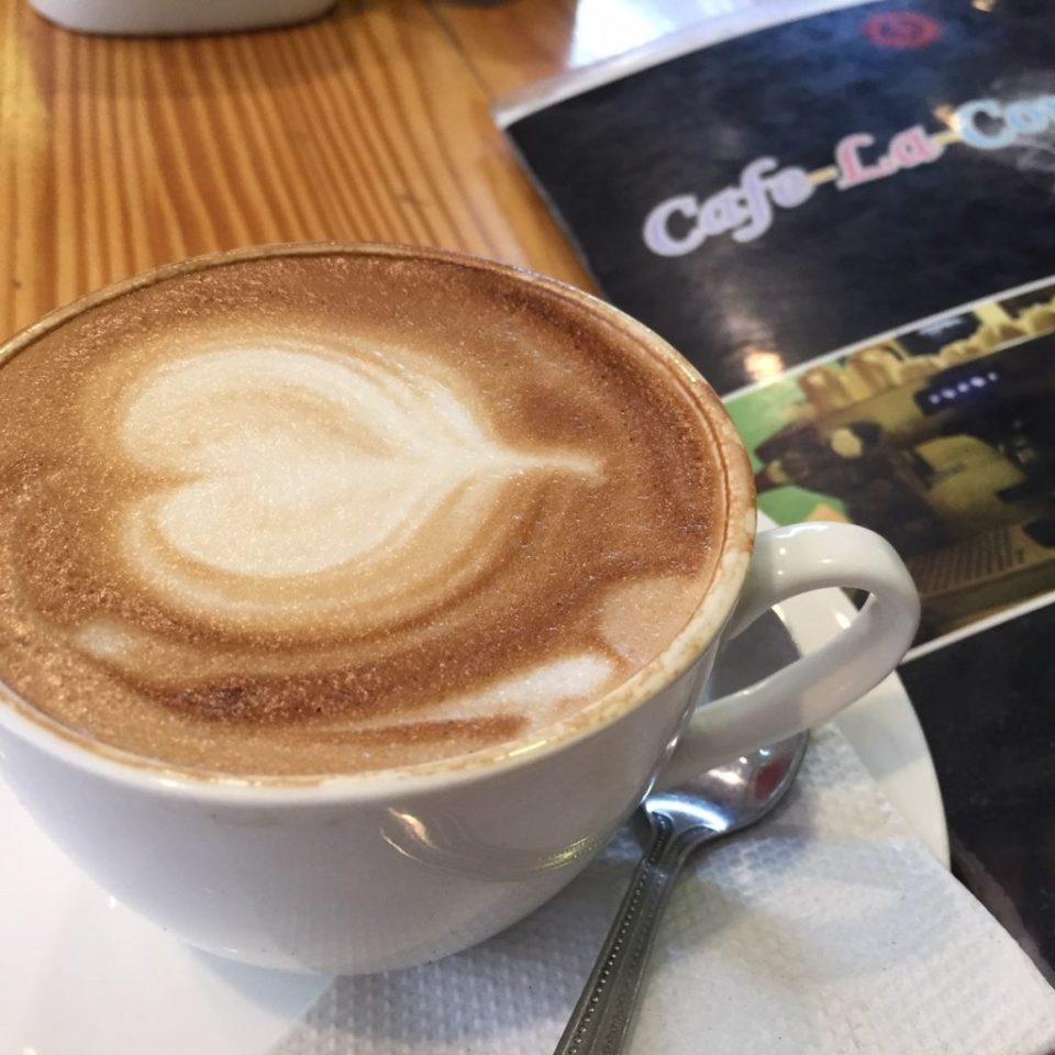 vegan coffee udaipur