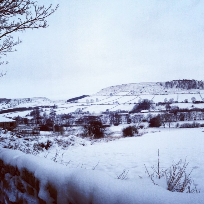 Snow in Esk valley