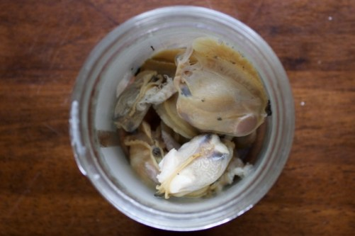 Clam meat, removed from the shells.