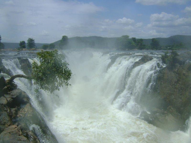Hogenakkal Falls in Tamil Nadu - The Cascading Beauty  (3/3)