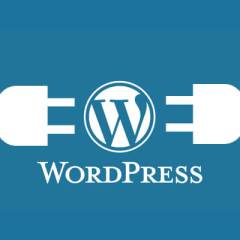 The Best WordPress Plugins for Business Websites For 2017