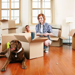 How To Move House With Pets?
