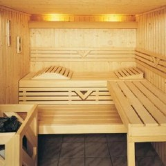 Sauna: ideas and inspiration