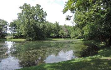 Williams Pond, where George spent time playing with children from the extended Carter family.