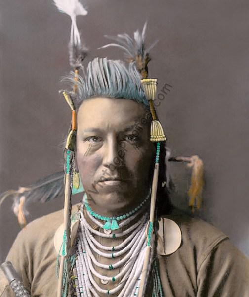 Swallow Bird Crow Warrior 1908