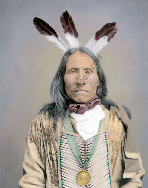 Iron Bear a Yankton Dakota Sioux Native American, 1904