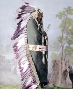Iron Shell, Sicangu Brule Native American 1872