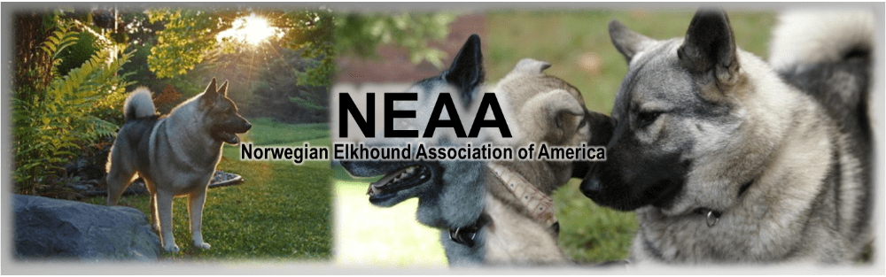 Breeders: The Norwegian Elkhound Association of America
