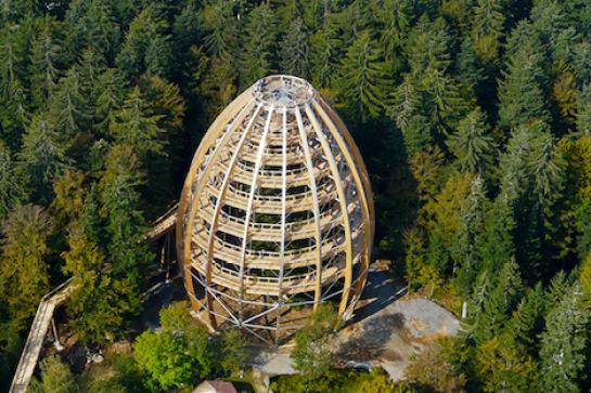 Bavarian-Forest-National-Park-3