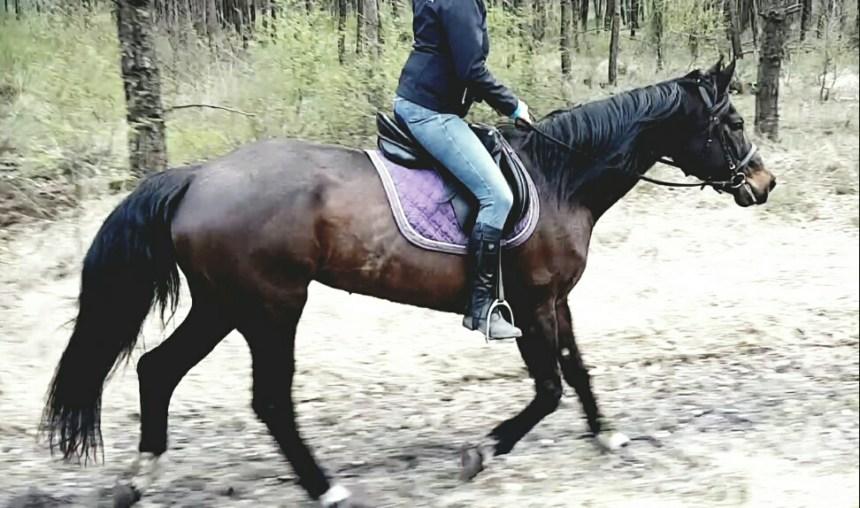 Happy pony met anoniem persoon ;)