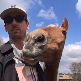 bonte pony knuffelen