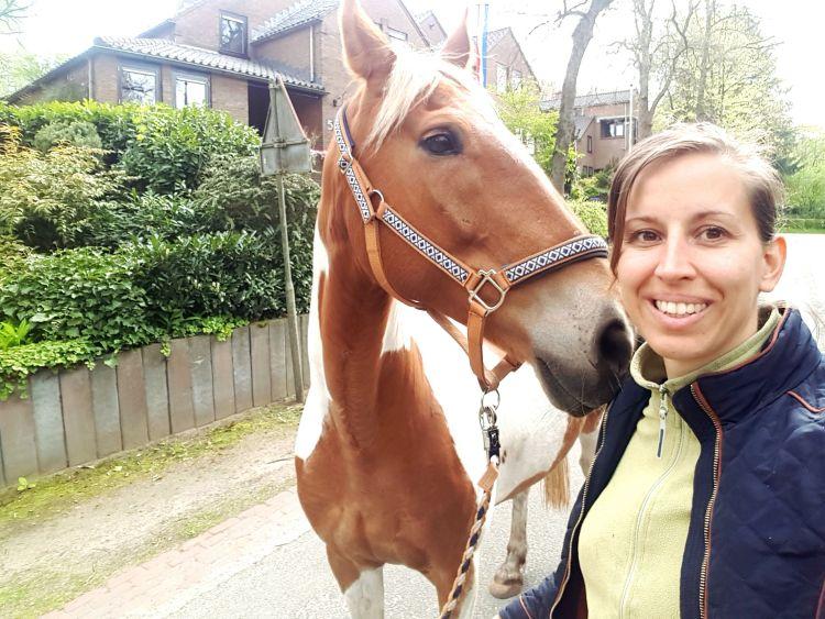 Door de bebouwde kom wandelen met paard